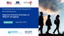 Webinars for a Regional Technical Exchange on Smuggling of Migrants